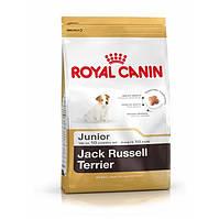 Корм Royal Canin Jack Russell Terrier Junior, для Джек Расселл Терьеров до 10 месяцев, 1.5 кг