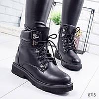 Ботинки женские Terrow черные 8715 зима