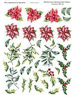 Лист с картинками, зимние цветы 20х15 см.