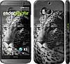 "Чехол на HTC One M8 dual sim Леопард 3 ""854c-55"""