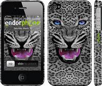 """Чехол на iPhone 4s Леопард v3 """"1088c-12"""""""