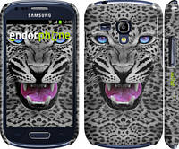 "Чехол на Samsung Galaxy S3 mini Леопард v3 ""1088c-31"""
