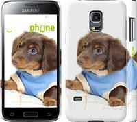 "Чехол на Samsung Galaxy S5 mini G800H Коричневый щенок на белом фоне ""141c-44"""