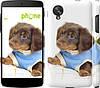 "Чехол на LG Nexus 5 Коричневый щенок на белом фоне ""141c-57"""