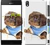 """Чехол на Sony Xperia Z3 D6603 Коричневый щенок на белом фоне """"141c-58"""""""