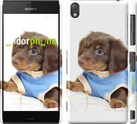 """Чехол на Sony Xperia Z3 dual D6633 Коричневый щенок на белом фоне """"141c-59"""""""