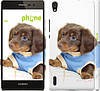 "Чехол на Huawei Ascend P7 Коричневый щенок на белом фоне ""141c-49"""