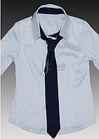 Стильная блузка школьная для девочки с галстуком