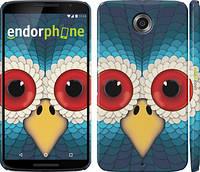 """Чехол на Motorola Nexus 6 Сова """"1068c-67"""""""
