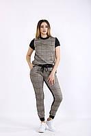 Стильный спортивный костюм в клетку | 01084-1 GARRY-STAR