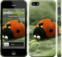 "Чехол на iPhone 5s Букашки. Приключение в Долине муравьев v2 ""2609c-21"""