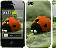 "Чехол на iPhone 4 Букашки. Приключение в Долине муравьев v2 ""2609c-15"""