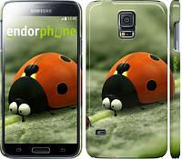 "Чехол на Samsung Galaxy S5 Duos SM G900FD Букашки. Приключение в Долине муравьев v2 ""2609c-62"""