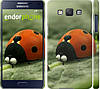 "Чехол на Samsung Galaxy A5 A500H Букашки. Приключение в Долине муравьев v2 ""2609c-73"""
