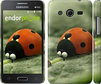 "Чехол на Samsung Galaxy Core 2 G355 Букашки. Приключение в Долине муравьев v2 ""2609c-75"""