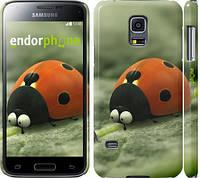 "Чехол на Samsung Galaxy S5 mini G800H Букашки. Приключение в Долине муравьев v2 ""2609c-44"""