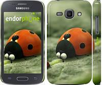 "Чехол на Samsung Galaxy Ace 3 Duos s7272 Букашки. Приключение в Долине муравьев v2 ""2609c-33"""