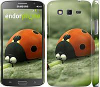 "Чехол на Samsung Galaxy Grand 2 G7102 Букашки. Приключение в Долине муравьев v2 ""2609c-41"""