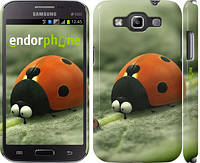 "Чехол на Samsung Galaxy Win i8552 Букашки. Приключение в Долине муравьев v2 ""2609c-51"""