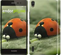 "Чехол на Huawei Ascend P7 Букашки. Приключение в Долине муравьев v2 ""2609c-49"""