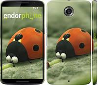 """Чехол на Motorola Nexus 6 Букашки. Приключение в Долине муравьев v2 """"2609c-67"""""""