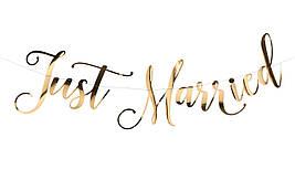 Гирлянда  бумажная свадебная Just Married 1,5 м