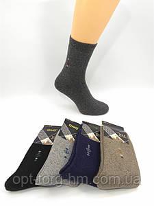 Мужские махровые носки Ангора (43-46 обувь.)