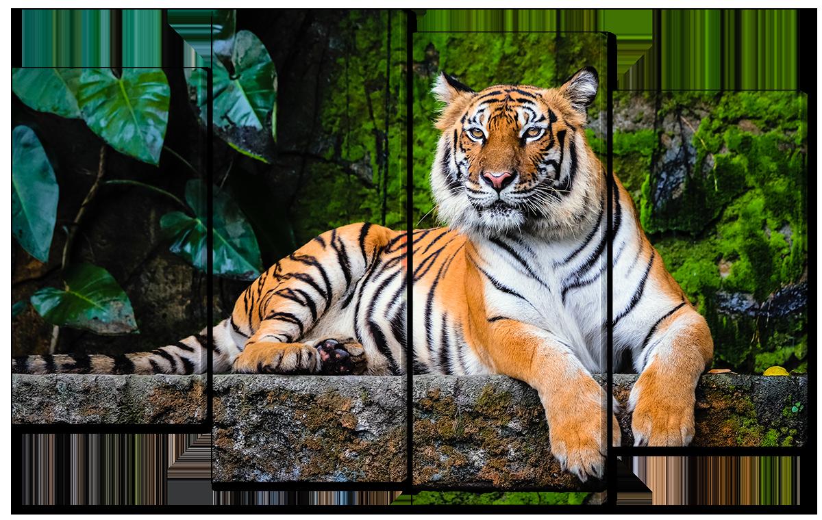 Модульная картина Interno Холст Бенгальский тигр 146x89см (R3781XL)