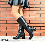 Комфортные демисезонные сапожки на каблуке кожаные черные, фото 5