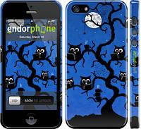 "Чехол на iPhone 5s Совы на дереве ""2374c-21"""