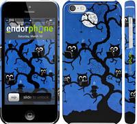 "Чехол на iPhone 5c Совы на дереве ""2374c-23"""