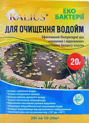 Уцінка Каліус біопрепарат для очищення водоймищ (20 г) (термін до 02.2020 р), фото 2