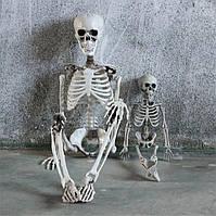 Скелет Декор для Хэллоуина, фото 1