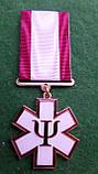 """Медаль """"За зцілення людських душ"""" для психологів,капеланів і т.д., фото 3"""