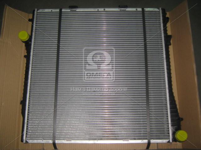 Радиатор охлаждения двигателя BMW X5 4.6/4.8 01- (Van Wezel). 06002276
