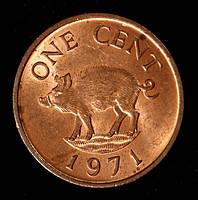 Монета Бермудских островов 1 цент 1971 г. Дикий Кабан