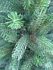 Новогодняя искусственная литая ель 2,1 метра Буковельская зеленая, фото 4