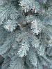 Новогодняя искусственная литая ель 2,1 метра Элитная голубая, фото 2