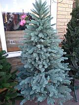 Новогодняя искусственная литая ель 2,5 метра Элитная голубая, фото 3