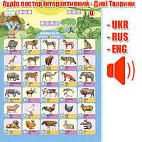 Говорящий плакат Дикие животные на трех языках | Дикі Тварини (UKR-ENG-RUS), Smart Koala