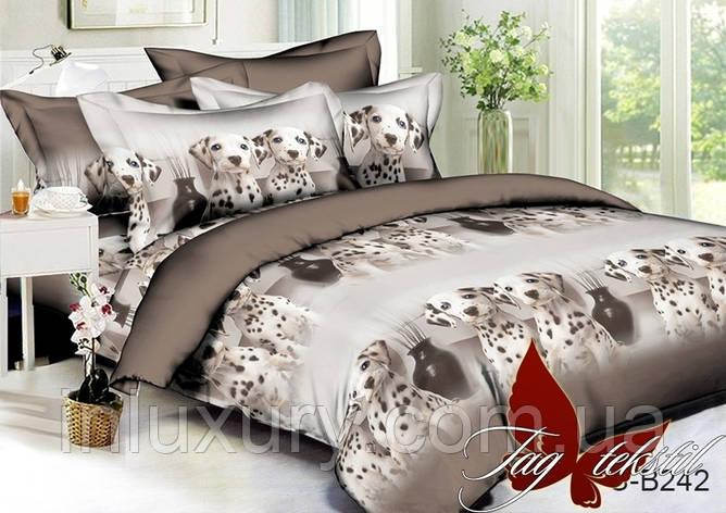 Комплект постельного белья PS-B242, фото 2