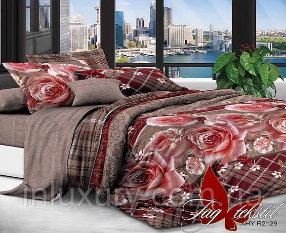 Комплект постельного белья XHY2129, фото 2