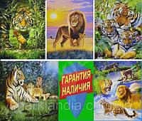 Картины по номерам с подарочной коробкой Гарантия наличия Тигры Львы Леопарды Ягуар Пантера