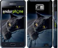 """Чехол на Samsung Galaxy S2 i9100 Дымчатый кот """"825c-14"""""""