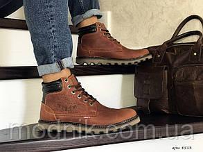 Чоловічі черевики Levis (коричневі) ЗИМА