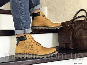 Чоловічі черевики Levis (гірчичні) ЗИМА