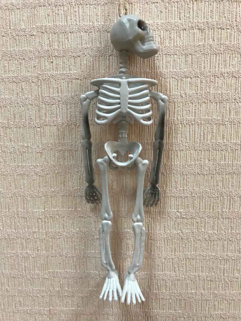 Подвесной скелет 33 см