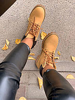 Женские демисезонные ботинки в стиле Timberland Ginger, фото 2