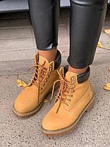 Женские демисезонные ботинки в стиле Timberland Ginger, фото 3
