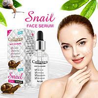 Коллагеновая сыворотка для лица с муцином улитки Snail Collagen омоложение +увлажнение + питание + анти акне, фото 1